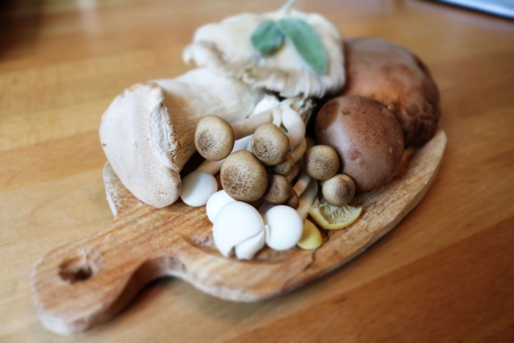 mushrooms power food against cancer